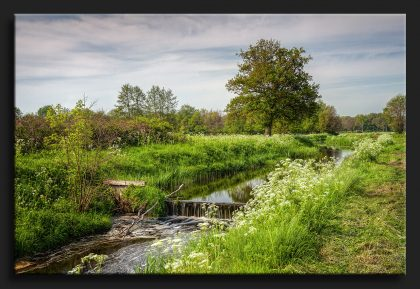 Vistrap Roden - Green Landscape at Roden Netherlands